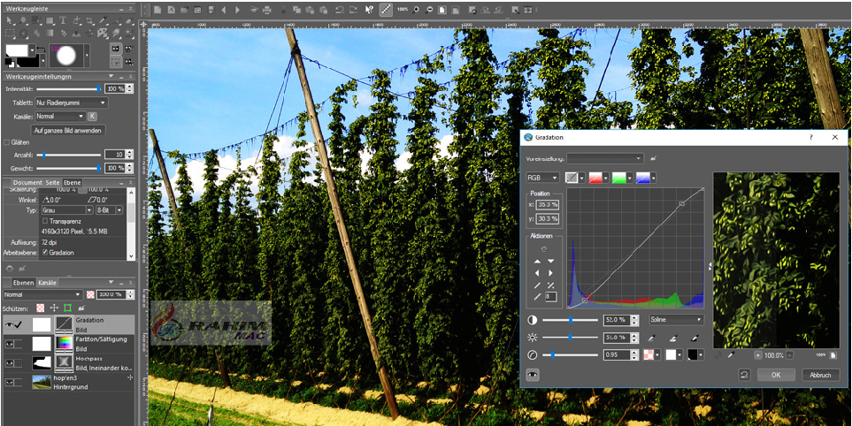 PhotoLine Crack + Product Key Free Download